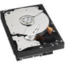 Caviar Black WD5003AZEX 500GB SATA-III 7200rpm 64MB