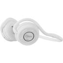 Over-Ear P311 White