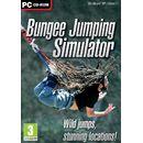 Bungee Jumping Simulator