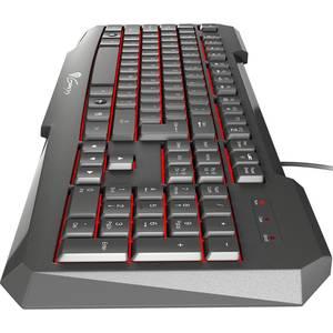 Tastatura gaming Genesis RX11 USB Black