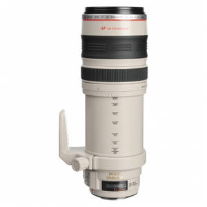 Obiectiv Canon EF 28-300mm f/3.5-5.6L IS USM