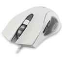 PMS00329 gaming alb