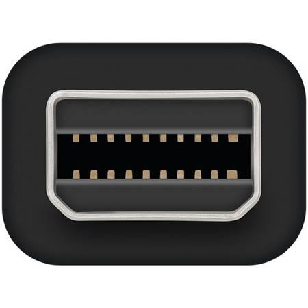 Cablu de date Apple Thunderbolt  0.5m Black