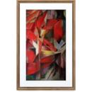 Rama foto NetGear Meural Canvas II 21.5 inch Dark Wood